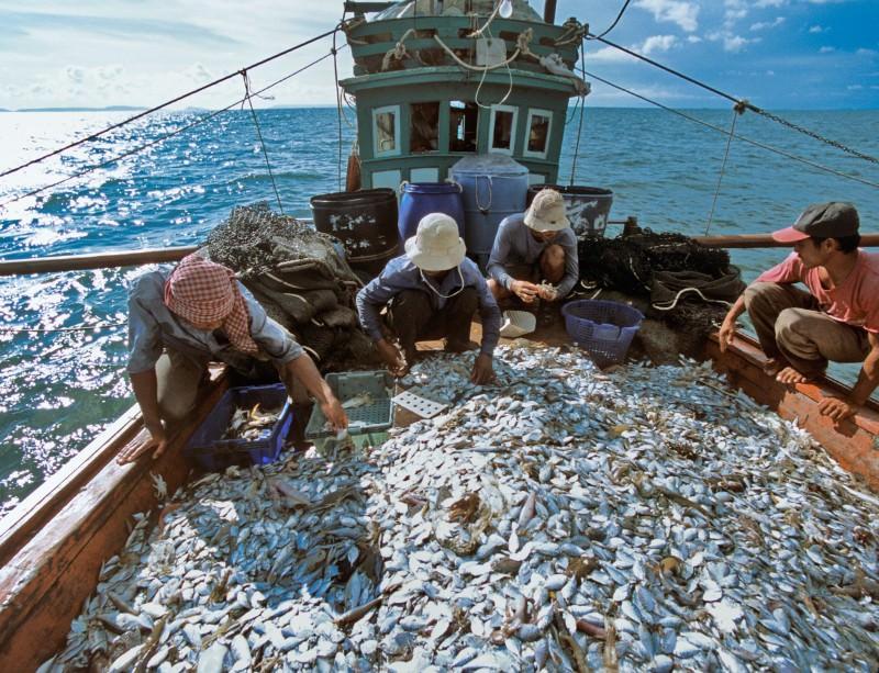 Pesca: Commissione Ue, 90% specie Mediterraneo sovrasfruttate