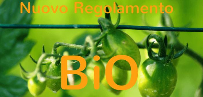 Agricoltura biologica, Mipaaf: pubblicato nuovo regolamento Ue