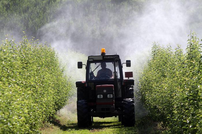 Agroalimentare italiano occupa 1 milione e 385 mila lavoratori