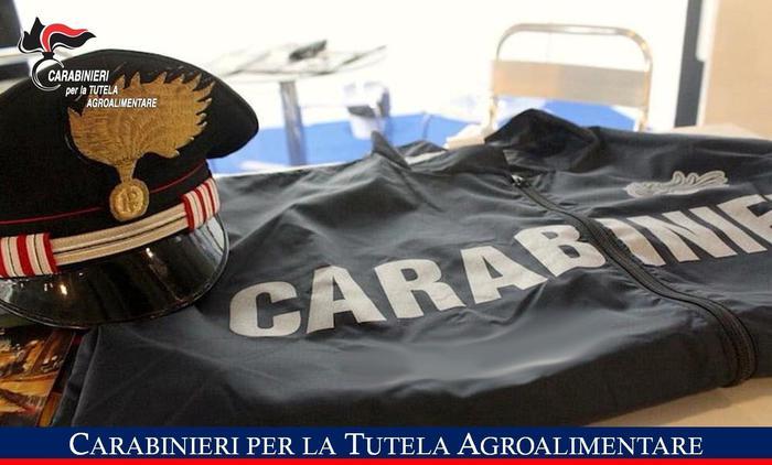 Carabinieri sequestrano 4 tonnellate cibo, da paté a salumi