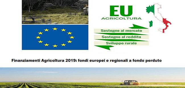 Finanziamenti Agricoltura 2019: fondi europei e regionali a fondo perduto