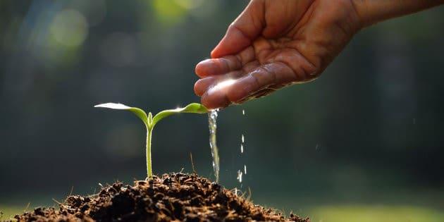 Un'agricoltura più sostenibile e rispettosa delle vocazioni territoriali