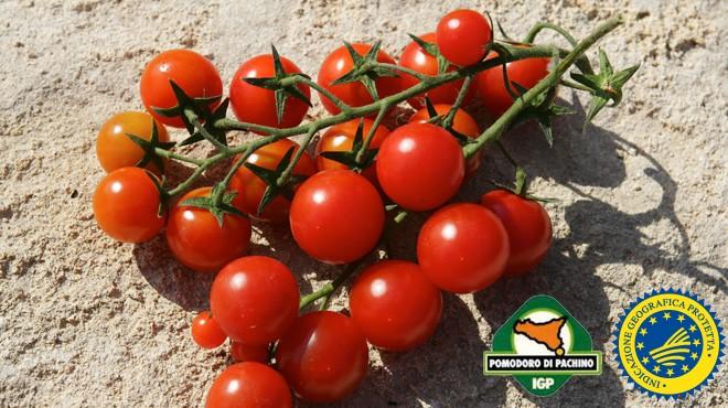 """L'appello del Consorzio Pomodoro di Pachino IGP: """"Acquistare il nostro prodotto è un atto di solidarietà"""""""
