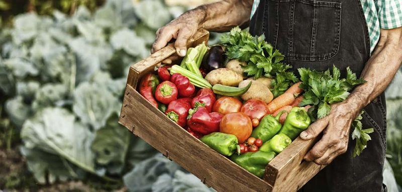 Consumi, 39% chef acquista dai contadini