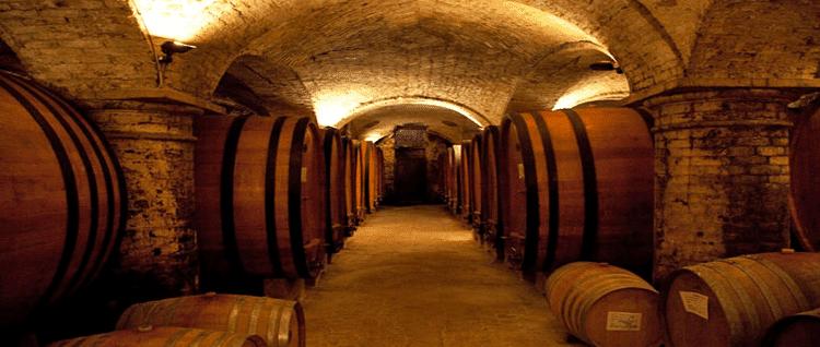 L'Italia del vino, fatturato da 11 miliardi, metà arrivano dall'export