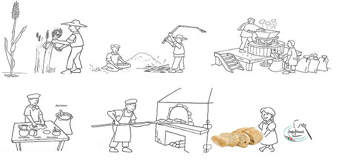 Dal grano al pane il prezzo aumenta 15 volte
