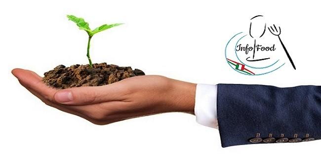 """Ancora tempo per il bando """"Coltiviamo agricoltura sociale"""""""