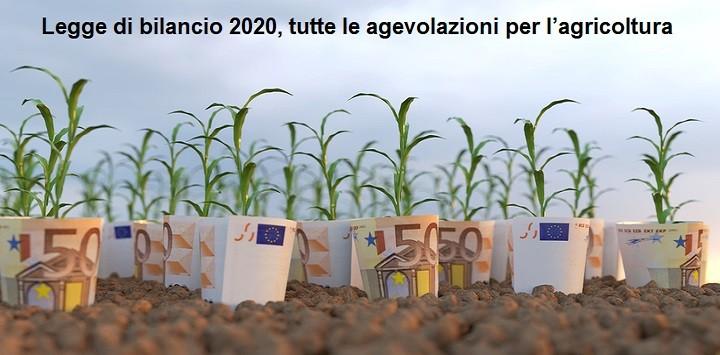 Legge di bilancio 2020, tutte le agevolazioni per l'agricoltura