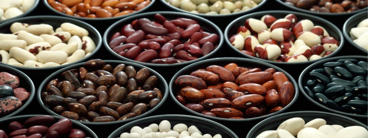 Consumi: 3 piatti di fagioli su 4 stranieri, +46% in 10 anni