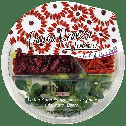 InsalArte-Pausa-Pranzo-In-Forma-Mirtirlli-rossi-e-goji